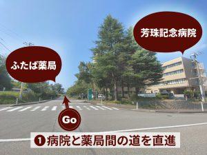 芳珠記念病院からの道1